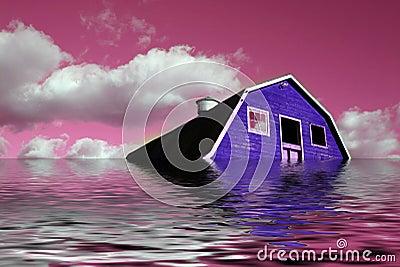 Sureal Pink Dream