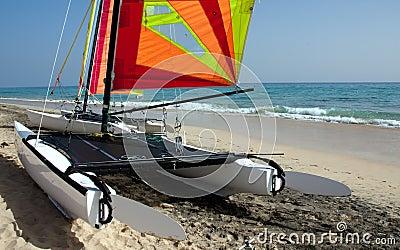 Surf Catamaran