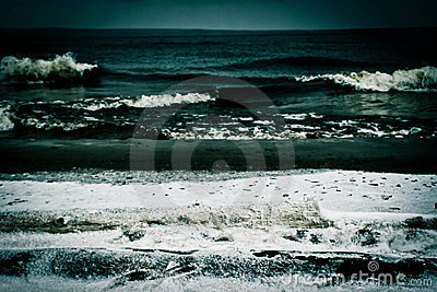 Surf in December