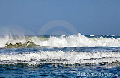 Surf and Gulls