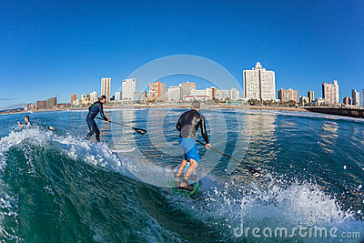 Surf Riders Two SUP Surfing Wave Editorial Photography