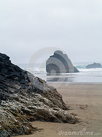 Surf Rolling in on a Rocky Beach