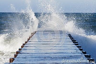 Surf s Up!