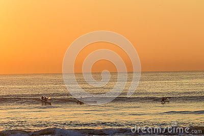 Surf-Ski Paddlers Riding Waves Editorial Photography