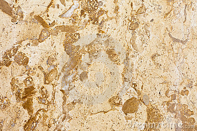 Surface of polished Marble Slab