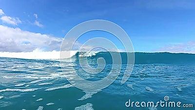 Surfer die Oceaangolf berijden stock video
