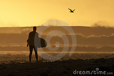 Surfer walking down the beach at sunset