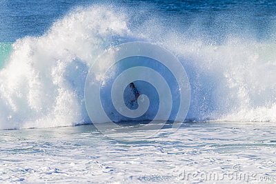 Surfer Wave Crashing