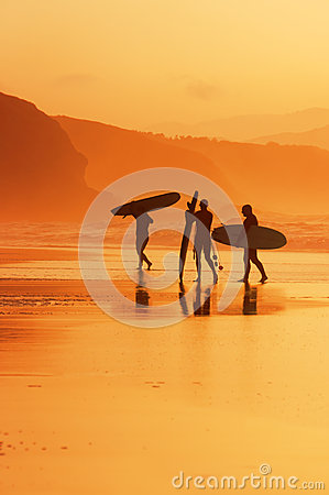 Free Surfers On The Shore At Sunset Royalty Free Stock Photo - 46237825