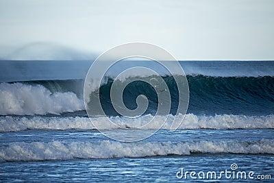 Surfers Scramble