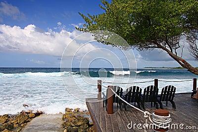 Surfing beach view