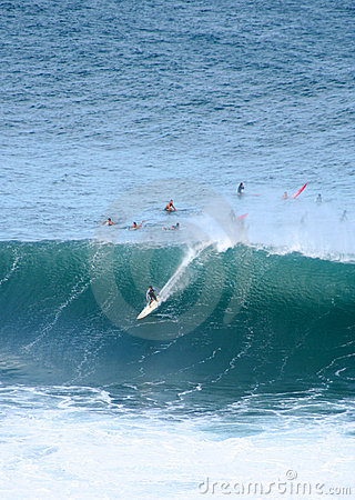 Surfing monsters, Waimea Bay, Hawaii