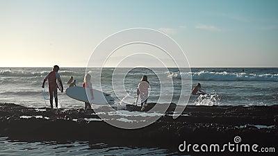Surfistas en la costa oceánica almacen de video