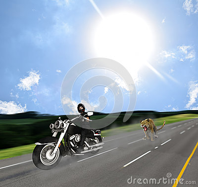 Free Surprised Biker Chase By Jaguar On Road Stock Photos - 73582273