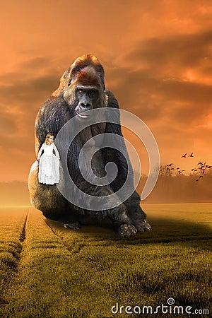 Free Surreal Gorilla, Girl, Imagination, Nature, Wildlife Stock Images - 129784794