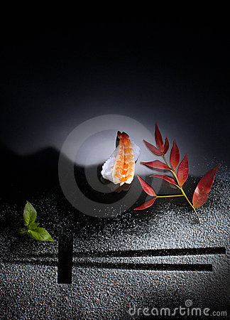 Free Sushi Art Stock Photo - 11993630