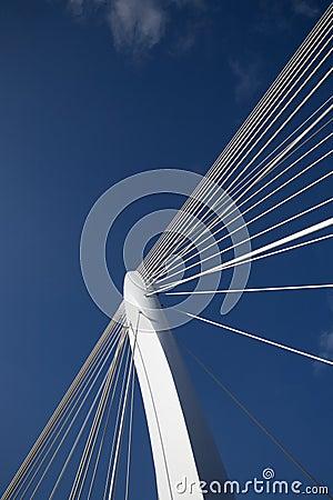 Suspension bridge 11