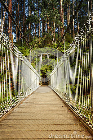 Free Suspension Bridge In Forest Royalty Free Stock Images - 70778469