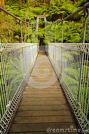 Free Suspension Bridge In Forest Royalty Free Stock Image - 70778496