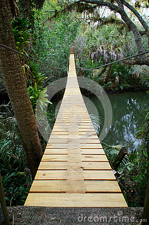 Suspension walking bridge in tropics