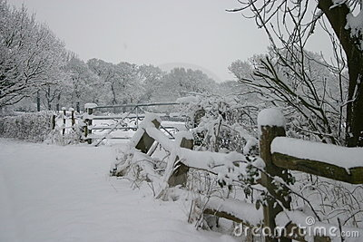 Sussex Countryside under a bed of snow