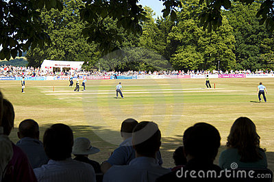Sussex v Surrey T20 cricket at Arundel Editorial Stock Photo