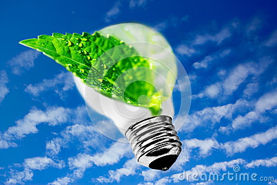 Sustainable development, leaf from lightbulb