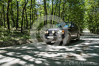 SUV in the forrest