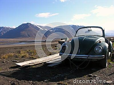 Svalbard abandoned Beetle
