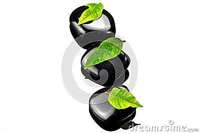 Svarta leafsstenar