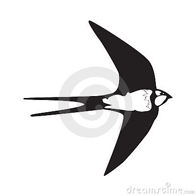 Swallow  outline silhouette