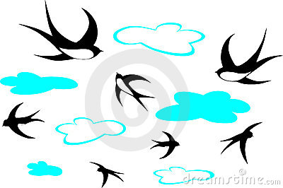 Swallows and clouds