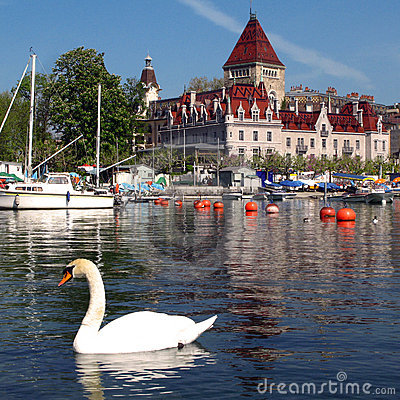 Free Swan And Chateau D Ouchy 05, Lausanne, Switzerland Royalty Free Stock Photos - 5143128