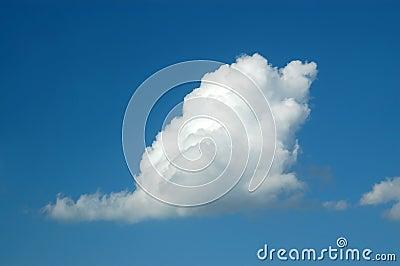 Swan-cloud