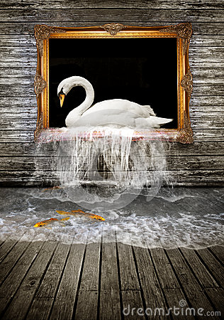 Free Swan In Golden Frame Royalty Free Stock Images - 45268429