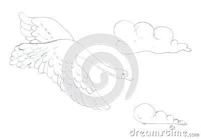 Swan sketch