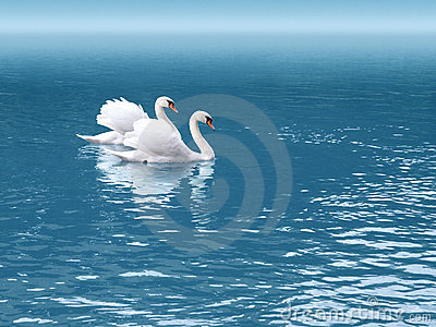 Swan två