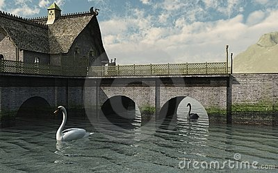 Swans by the Bridge