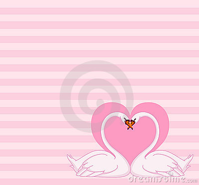 Swans love letter