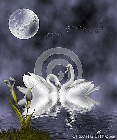 Swans Slate Blue