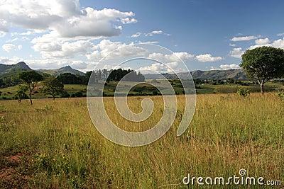 Swasiland-Landschaft