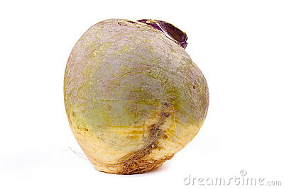 Swede or Turnip