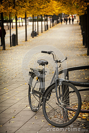 Sweden s fondness for bicycle