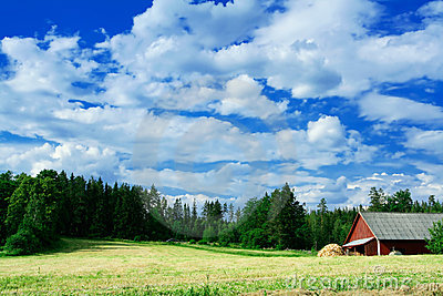 Swedish country side scenery