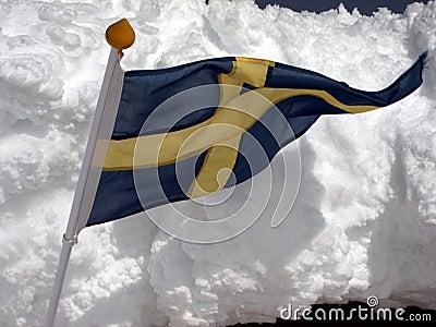 Swedish flag and snow
