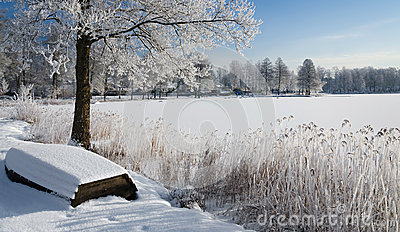 Swedish winter panorama landscape