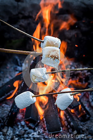 Free Sweet And Hot Marshmallows On Stick Over The Bonfire Royalty Free Stock Image - 88941866