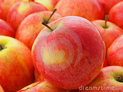 Sweet apple.