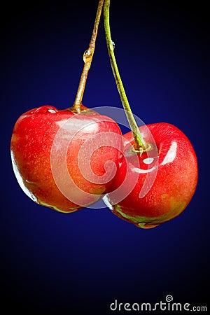Free Sweet Cherry Royalty Free Stock Photo - 2819445