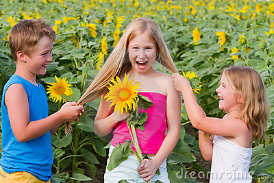 Sweet children in sunflower field